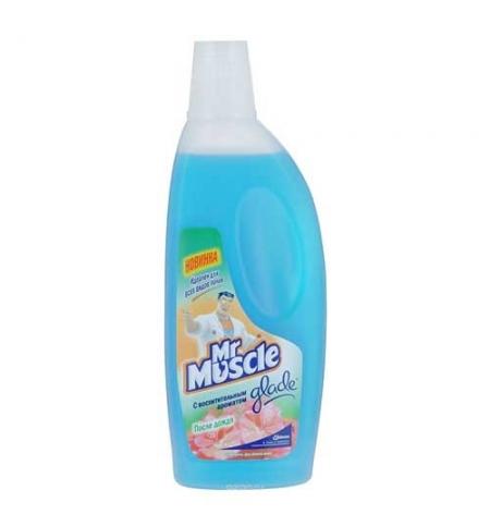 фото: Универсальное чистящее средство Мистер Мускул 500мл, цветочное совершенство, жидкость